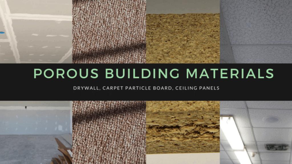 Bleach kill mold in carpet carpet vidalondon for I 10 building materials